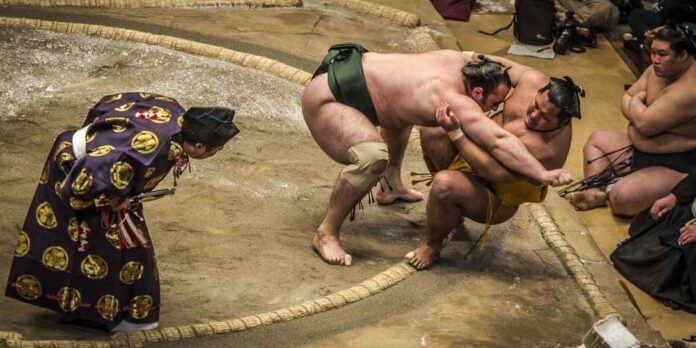 Things You Need To Know About Sumotori Wrestling