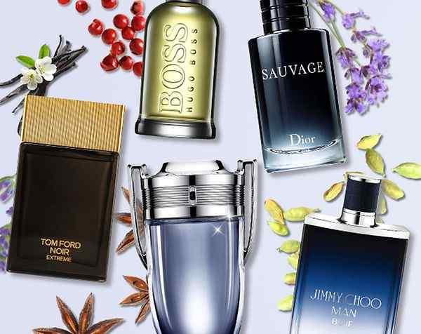 Best Perfumes & Colognes For Men
